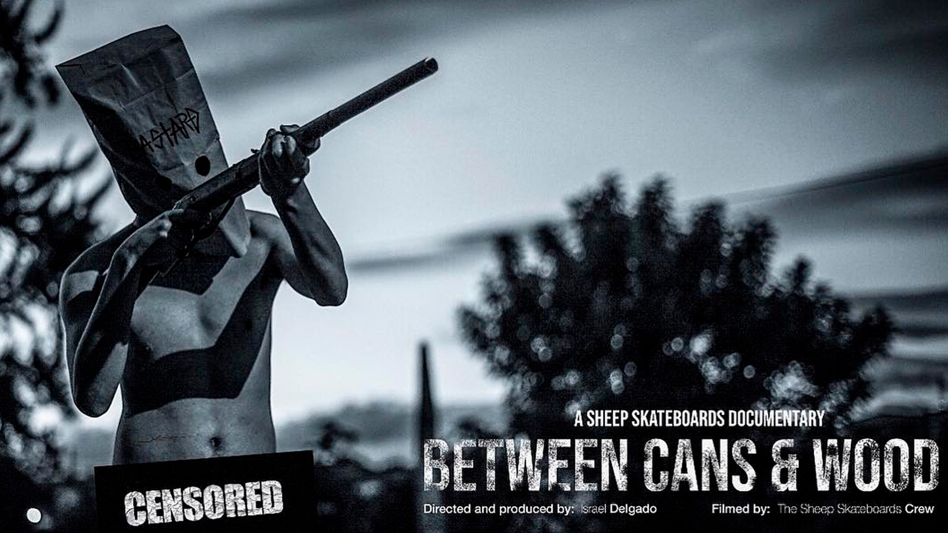 """Between Cans & Wood"": graffiti, el skateboarding y el hardcore"